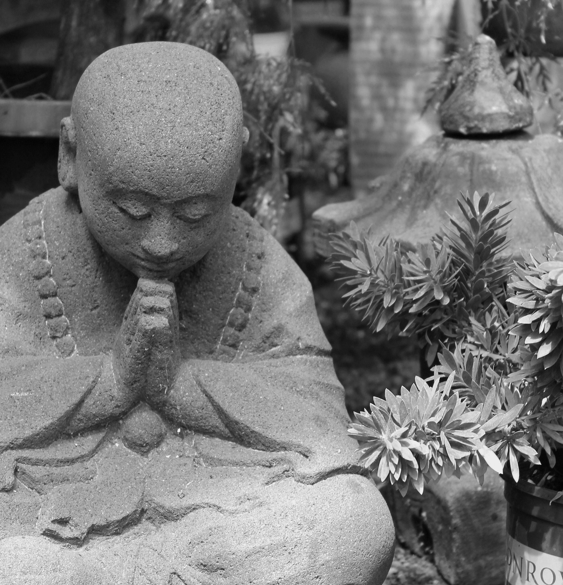 Buddha black/white